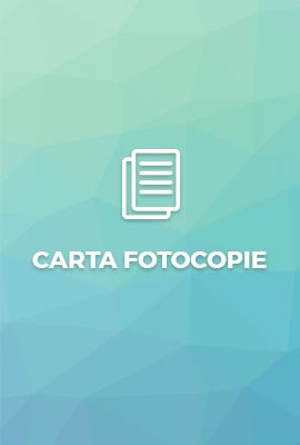 Baumgartner Articoli Carta fotocopie